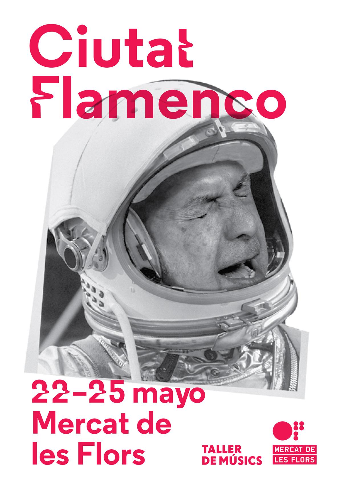 Ciutat Flamenco 2015