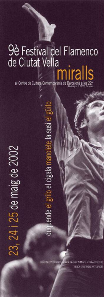 Ciutat Flamenco 2002